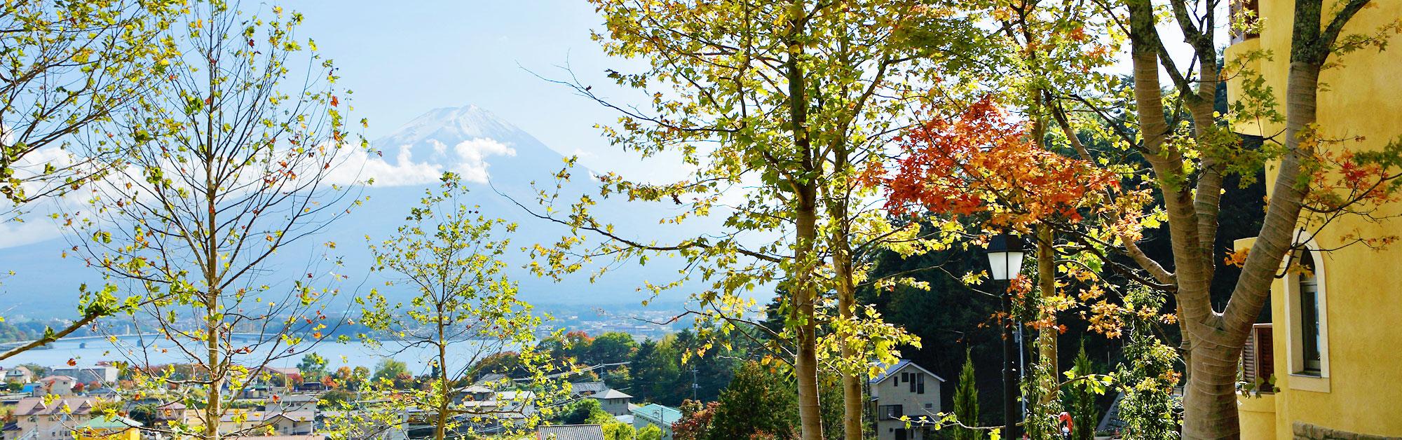 LA VISTA 富士河口湖 イメージ